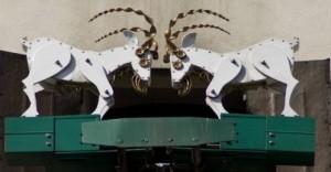 Las dos cabras del reloj del Ayuntamiento son el símbolo de la ciudad de Poznan.