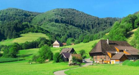 La Selva Negra la encontramos localizada en la región suroeste alemana