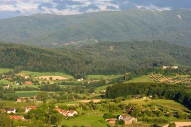 Vista de la Selva Negra a la altura de la ciudad de Friburgo