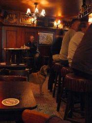 El Dijk 120 es un curioso Café del barrio rojo, donde podemos tomar buena cerveza y escuchar música antigua