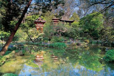 Podemos visitar el maravilloso japanese tea garden