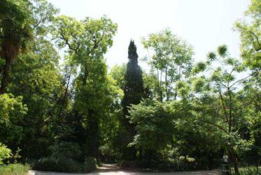 Los Jardines Nacionales, un refugio verde en Atenas