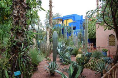 Los jardines de Majorelle con su casa azul son de gran atractivo