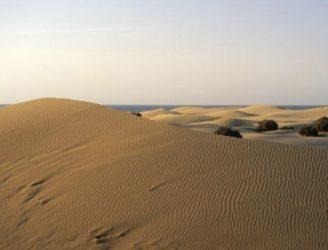 Las dunas de Maspalomas son algo muy hermoso