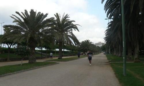 Parques y Jardines en Las Palmas